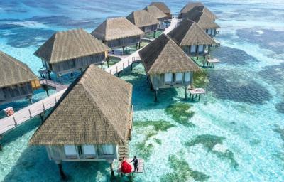 Odsprzedam wakacje | Dominikana | 22-29 września | 2 osoby