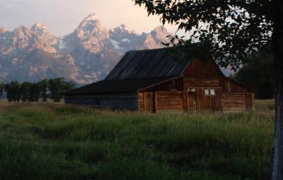 Odsprzedam noclegi | 15-17 maja | Domki pod lasem