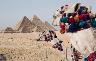 Odsprzedam wakacje | Egipt | Zwiedzanie i odpoczynek | 2 osoby | 4-19.04